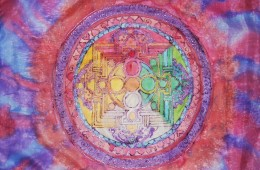 Mandala transparente (2012)